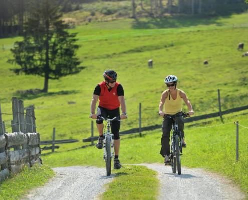 Mountainbike mit 14 Touren